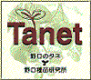 Tanet